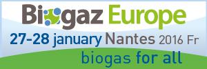 BGZEU16-bann_300x100-BioenInsight-EN-02
