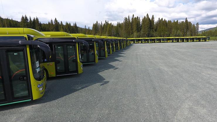 MAN Lion's City buses