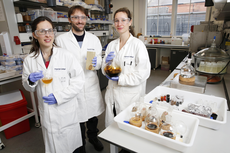 Image: Professor John Hallett, Dr Florence Gschwend and Dr Agi Brandt-Talbot of Chrysalix Technologies